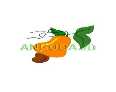 Angocajú